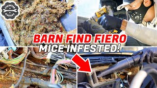 MICE INFESTED Car Restoration & Detailing 1987 Pontiac Fiero GT Part 2 - Complete Disaster Detailing