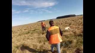 Caçada de perdiz no Uruguai - GoPro 2