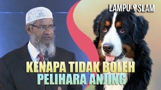 Kenapa Islam MELARANG PELIHARA ANJING? | Dr. Zakir Naik