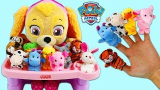 Paw Patrol Baby Skye Learns Animal Names and Colors with Cute Finger Puppets!