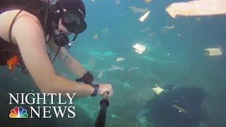 Stunning New Video Shows Massive Plastic Debris In Ocean | NBC Nightly News