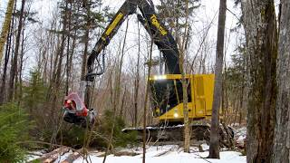 Harvester Tigercat H822D with Log Max Harvesting Head
