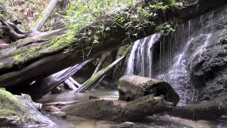 5 Minutes of Waterfall Zen
