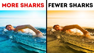 The Only Way to Survive a Shark Attack