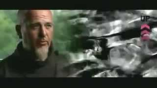 Peter Gabriel - Up - Making The Album