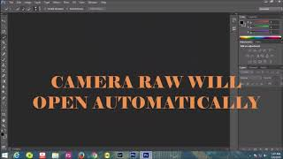 How to install camera raw filter to Adobe Photoshop cs6