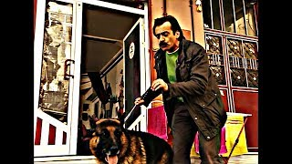 Akasya Durağı - Köpek Dostu Tırınını
