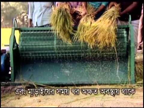Banglar Krishi 51 (Bina Dhan 7, Tula Chase sex faromane, Dhan marai, Naper Ghas)