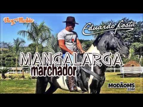 Eduardo Costa Mangalarga Marchador Lançamento 2016