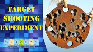 .308 Target shooting experiment