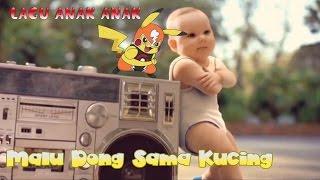 Lagu Anak Malu Dong Sama kucing Baby Dance Songs Meong Meong