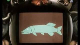 PA a PI (10) - Podvodna lekarka