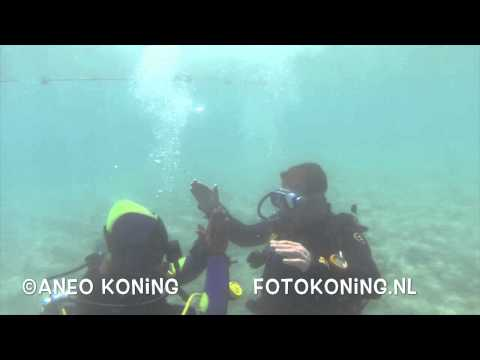 eerste duik brayka bay reef eygpte