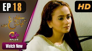 Drama | Is Chand Pe Dagh Nahin - Episode 18 | Aplus ᴴᴰ Dramas | Zarnish Khan, Firdous Jamal