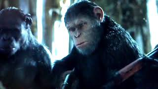 War  for   the   planet  of  the   apes     8