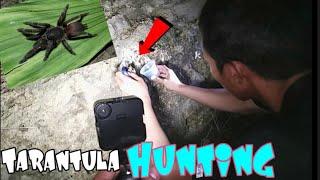 TARANTULA HUNTING IN CAVITE PHILIPLINES