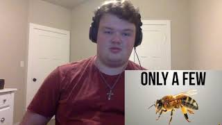 Film Theory: The Bee Movie LIED To You! Reaction