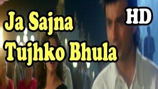 Ja Sajna Tujhko Bhula DJ Jhankar Full HD 1080p Song Movie Raja 1995 Alka Yagnik , Udit Narayan