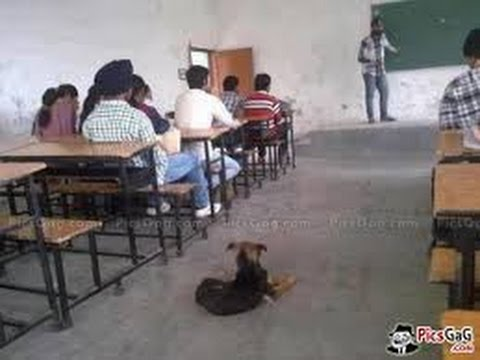 Xxx Mp4 Desi Class Room 3gp Sex