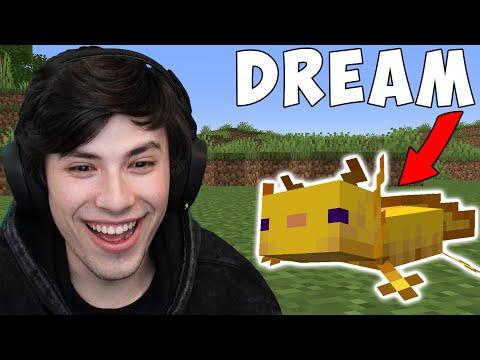 Minecraft But My Friend Is An Axolotl
