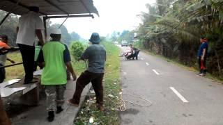 Raya Haji.lembu mgamuk d kpg mang kota samarahan