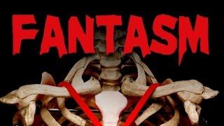 FANTASM (2013) - Movie Review