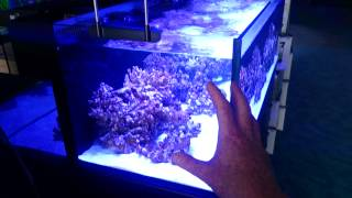 Why a fish tank will leak or crack!