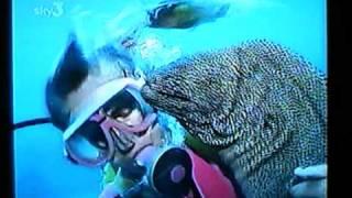 Moray Eel - Ron & Valerie Taylor.mpg