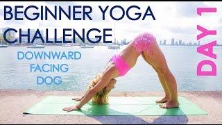 Day 1 Beginner Yoga Challenge: Downward Facing Dog