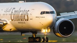 For the BOEING 777 FANS - BOEING 777-300 landing of Emirates and Etihad