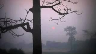Banglan new song emran khan