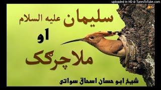 sheikh abu hassaan swati pashto bayan -  د ملاچرګک او سلیمان علیه السلام واقعه