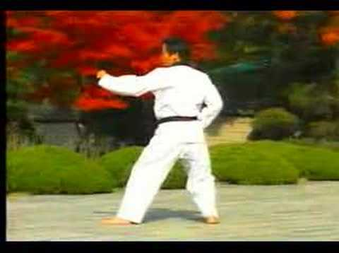Xxx Mp4 4 Taekwondo Poomsae Taegeuk Sa Jang WTF 3gp Sex
