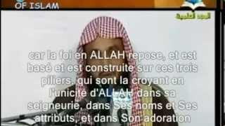 (VOSTFR) Les differentes categoris de tawhid, cheikh abderrazzaq al abbad