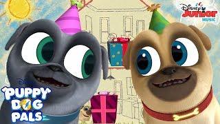 Birthdays Are the Best Music Video | Puppy Dog Pals | Disney Junior