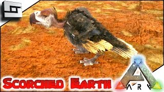 ARK: Scorched Earth - VULTURE TAMING/BREEDING! E34 ( Ark Survival Evolved Gameplay )