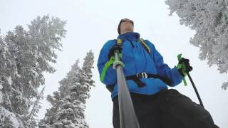 Alta Backcountry Skiing- March 2016