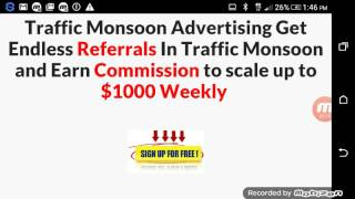 Traffic Hurricane advertising shares revenues up to $55 video