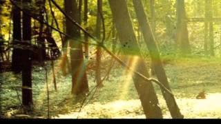 Childish Gambino - Sunrise