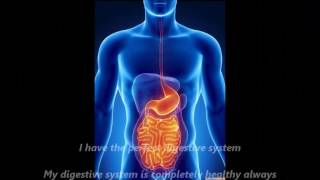 Perfect Digestive system Subliminal