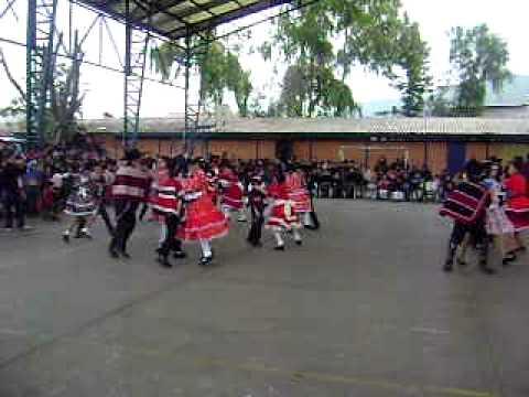 Baile Polka 2009