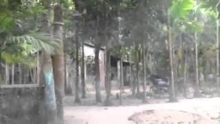 Boruni village piror bazar sylhet Bangladesh