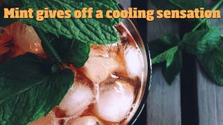 8 cheap ways to stay cool without air conditioning