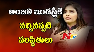 Anjali About Family Support on Movie Career || NTV