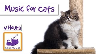 4 Hours of Music for Cats! Extra Long Cat Music! Lasts 4 Hours to Help your Cat Sleep
