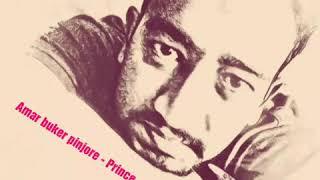 Amar Buker Pinjore - Prince