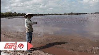 Tan hoang đồng muối vì… nước thải |  VTC