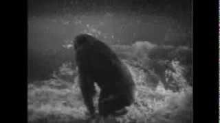Tarzan, O Filho Das Selvas (Dublado) 1932