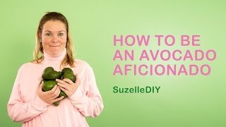How to be an Avocado Aficionado