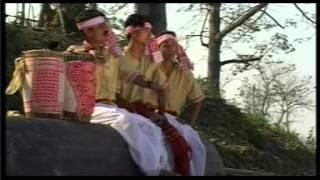 Assamese Bihu Song- KOLONG KOPILI
